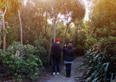 Hattenburn Anna Marie Kingsley Wairarapa Garden Tour 02
