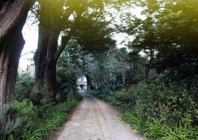 Te Puhi Wairarapa Garden Tour 2018 Pukaha 17