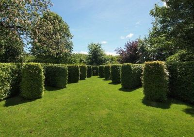 Richmond Garden Topiary