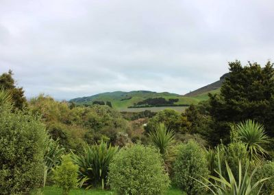 Beautiful Bush Garden Awariki Wairarapa Garden Tour 2018 21