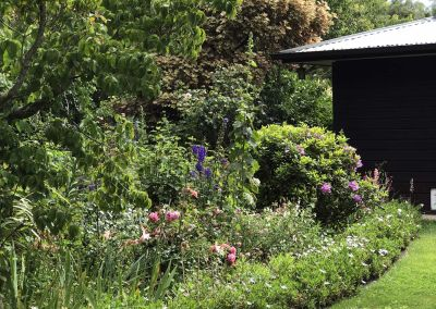 Kinder Garden Border By House Wairarapa Garden Tour