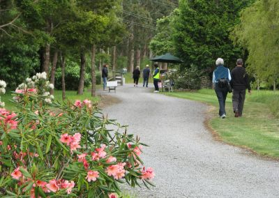 Tarata driveway