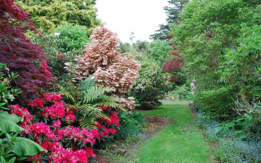 Braemore Farm Garden