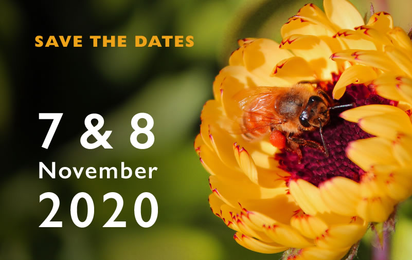Wairarapa Garden Tour 7-8 November 2020