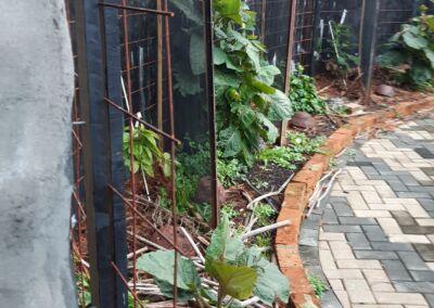 Hot Garden, Olla Terracotta Resizedforweb