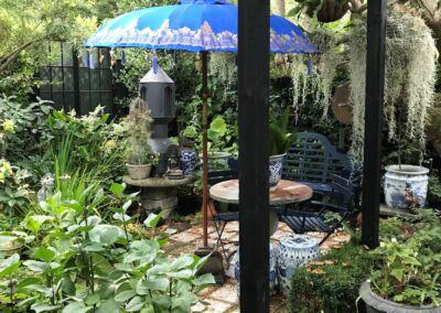 Blue Umbrella Air Plants Web