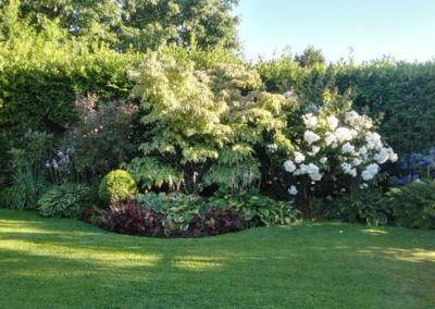 Textures Of The North Garden