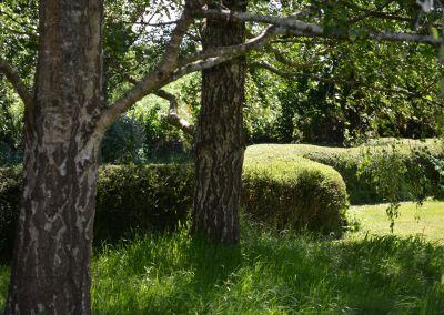 Smlcurvy Hedge Close